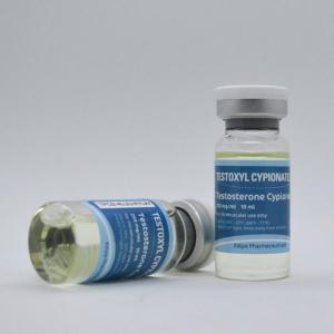 Testoxyl Cypionate 250 - Testosterone Cypionate - Kalpa Pharmaceuticals LTD, India